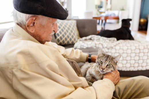 The Benefits of Getting a Pet for Your Loved One